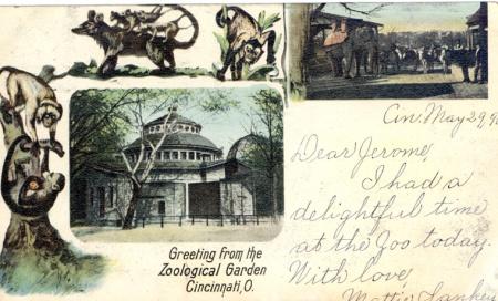 zoologicalgardenpostcard