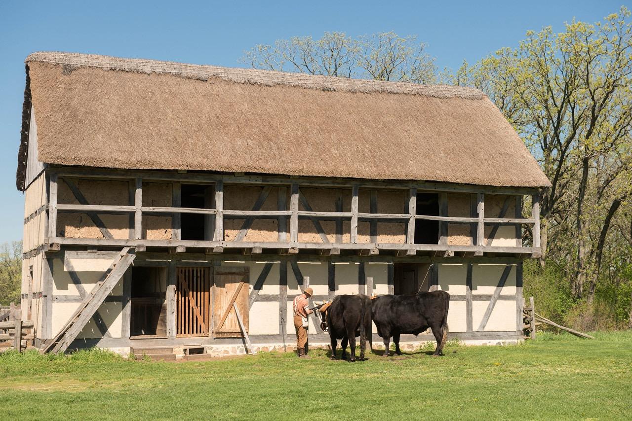 Loyd Heath - Stable b on the Schulz farm. By Loyd Heath.