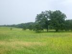 Kettle Moraine StateForest